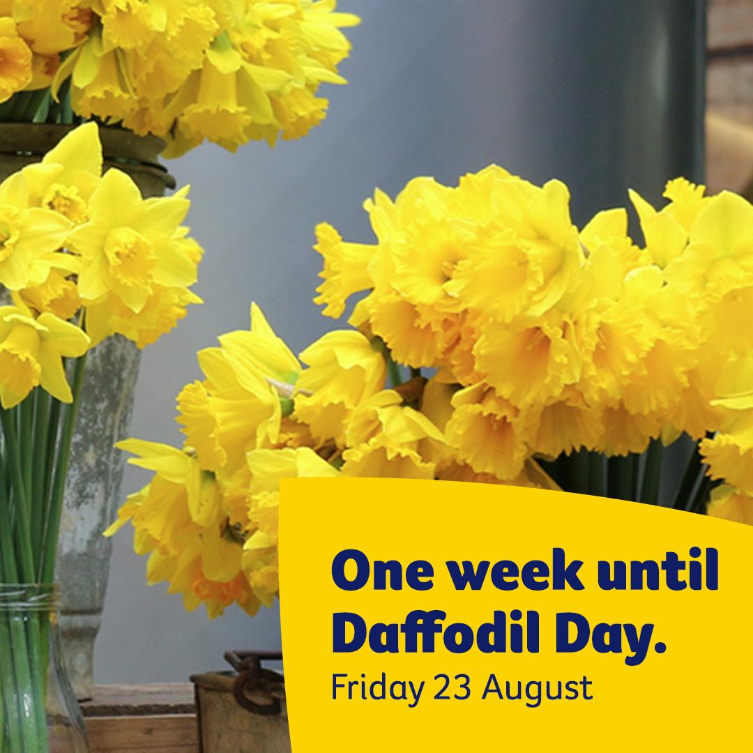 One week until Daffodil Day - Instagram
