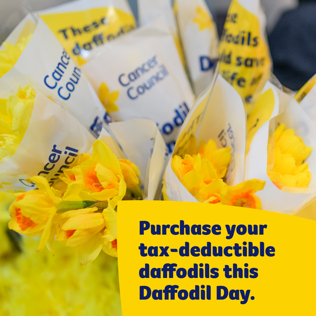 Purchase Daffodils - Instagram